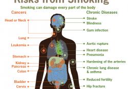 Effets du tabac sur la santé - Wikipédia