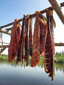 Cuisine indigène d'Amérique 5